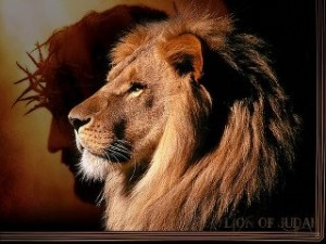 Lion of Judah Jesus