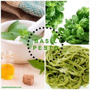 tasty tuesday: pesto and cole slaw