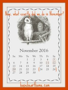 what i learned and did in november 2016